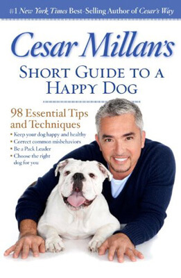Short Guide to a Happy Dog
