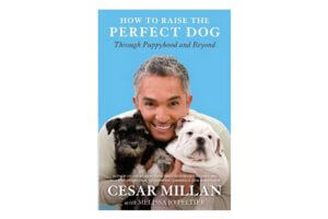 Top 20 Best Dog Training Books in 2018 Reviews