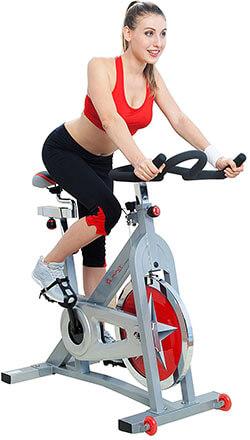 Sunny Health & Fitness SF-B901 Pro