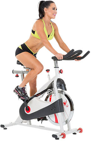 Sunny Health & Fitness SF-B1509 Indoor Exercise Bike
