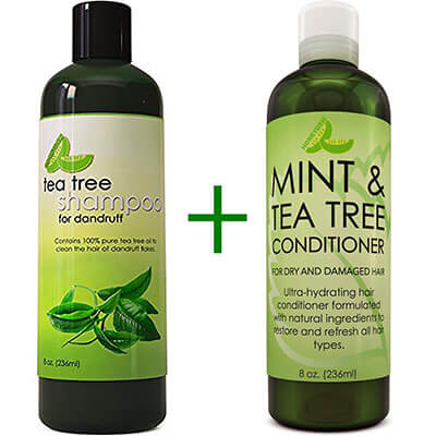 Honeydew Tea Tree Dandruff Shampoo and Hair Conditioner