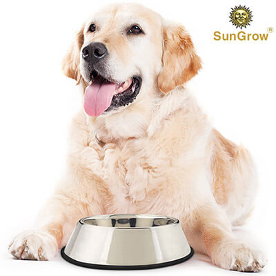 SunGrow Jumbo Feeding Pet Stainless steel Bowl (32 oz)