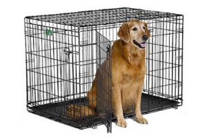 Top 5 Best Metal Dog Crates in 2018 Reviews