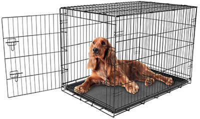 Carlson Pet Products Dog Crate