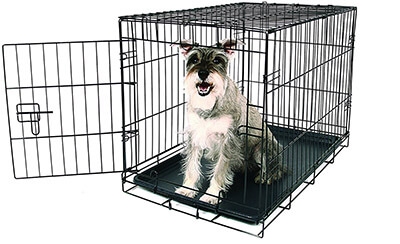 Carlson Pet Products Metal Dog Crate