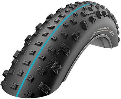 Schwalbe Jumbo Jim Fat Bike Addix Tire, 26-Inch