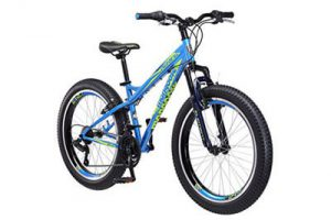 Top 10 Best Fat Tire Bikes in 2018 Reviews
