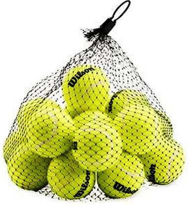 Wilson Pressureless Tennis Balls