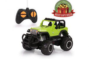 Top 10 Best Remote Control Cars in 2018 Reviews