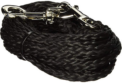Coastal Pet Poly Big Dogs Tie Out with Nickel-Plated Swivel Snaps