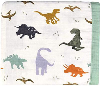 Dinosaur Muslin Stroller Blanket