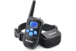 Top 10 Best Dog Training Collars in 2018