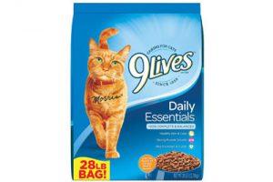 Top 10 Best Dry Cat Foods in 2018