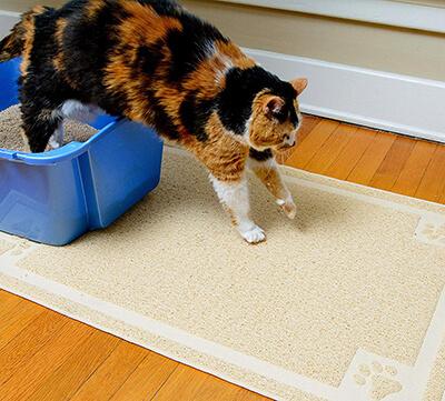 CleanHouse Cat Litter Mat