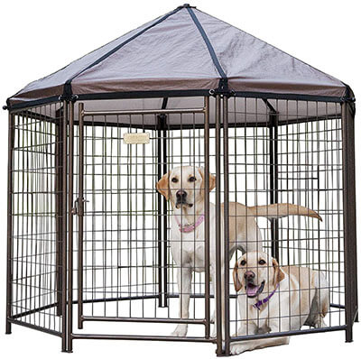 Advantek Outdoor Dog Kennel