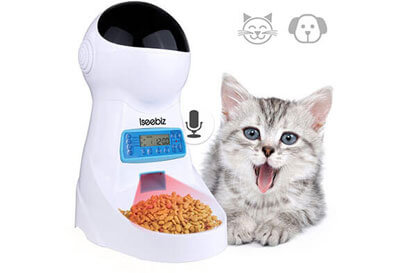 Top 10 Best Automatic Cat Feeders in 2019 Reviews
