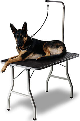 Paws & Pals Grooming Table for Dogs Portable Tables Stand Pet
