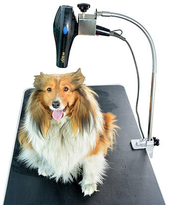 SHELANDY Dog Grooming Table Rrms Hair Dryer Holder Hands