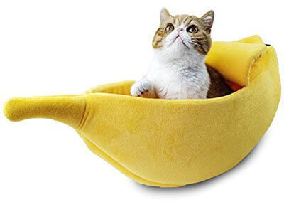 PET GROW Cat and Rabbit Bed House