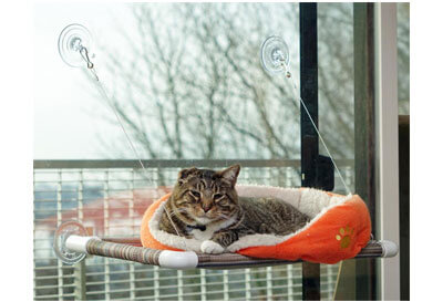 Top 10 Best Cat Window Perches in 2019 Reviews