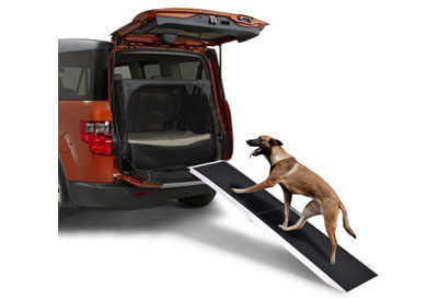 Top 10 Best Dog Ramps for Cars in 2019