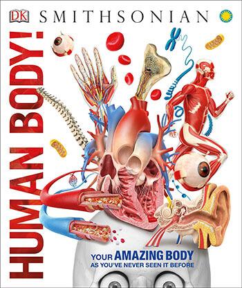 Human Body: Knowledge Encyclopedias