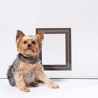 PetSafe Pet Screen Door, Dog & Cat Door