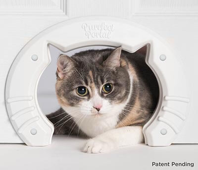 Purrfect Portal Built-in Interior Pet Cat Door