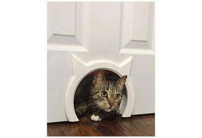 Top 10 Best Cat Doors in 2019 Reviews