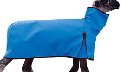 Weaver Leather Cordura Solid Butt Sheep Blanket