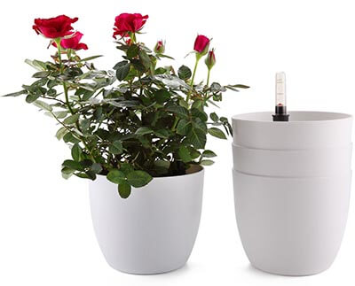 "T4U 6"" Plastic Self Watering Planter"