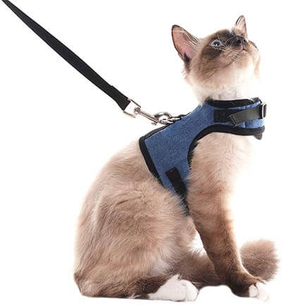SCENEREAL Escape Proof Cat-Harness and Leash