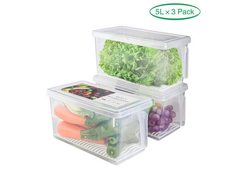Top 10 Best Fridge Storage Containers in 2019