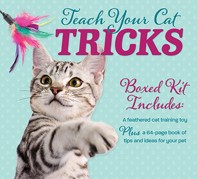 Teach Your Cat Tricks Book and Toy Kit
